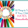 20 Things to Try if Your Kid Hates Homeschooling