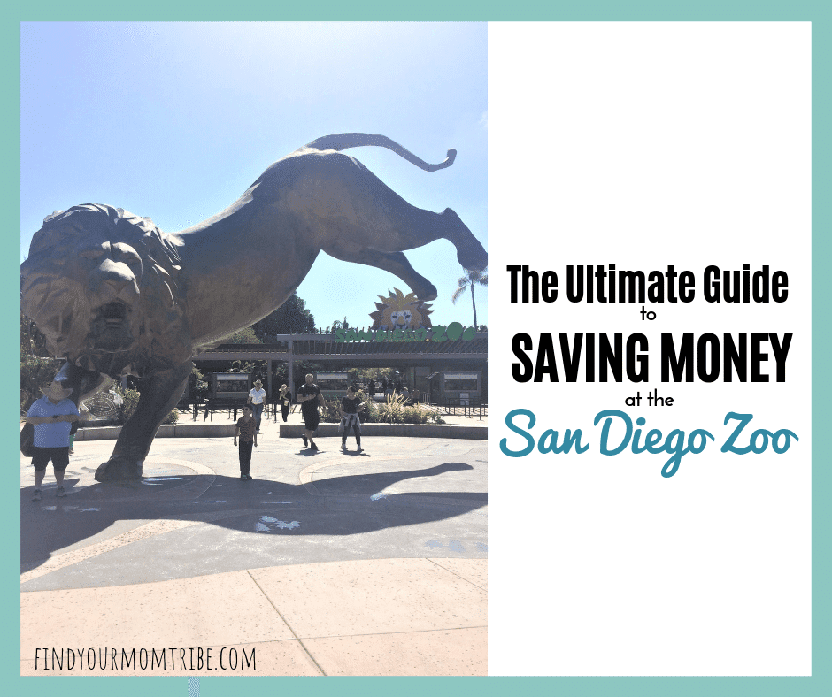 How to save money at the San Diego Zoo