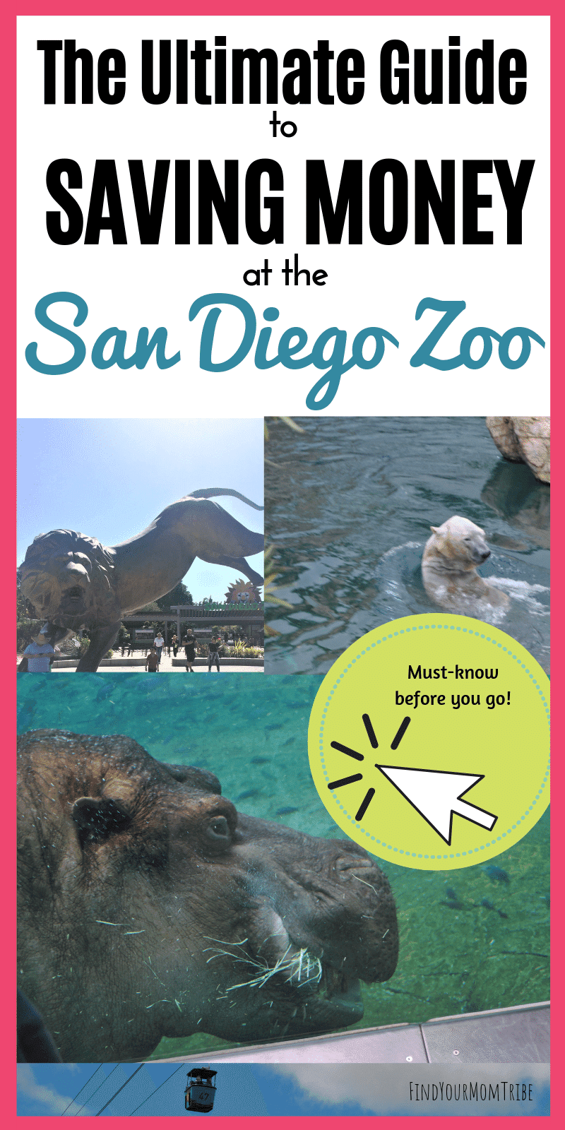 How to save money on a trip to the San Diego Zoo