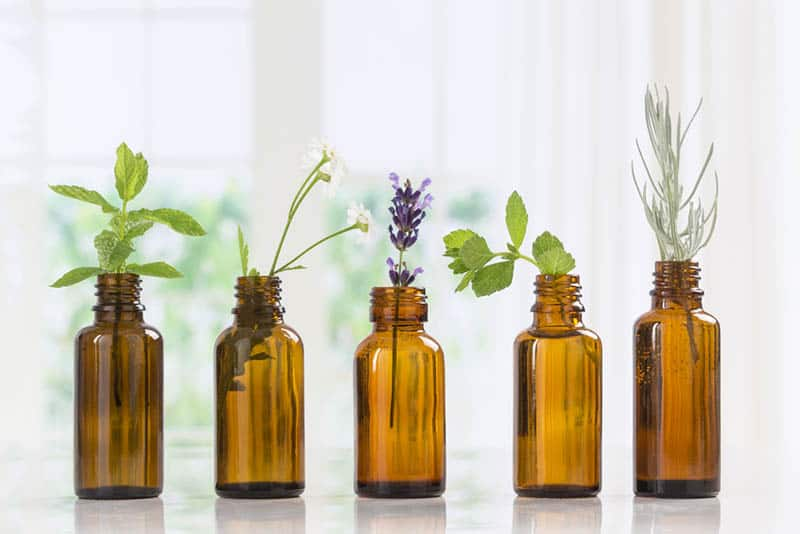 Essential Oils For Babies: 7 Types and Their Uses