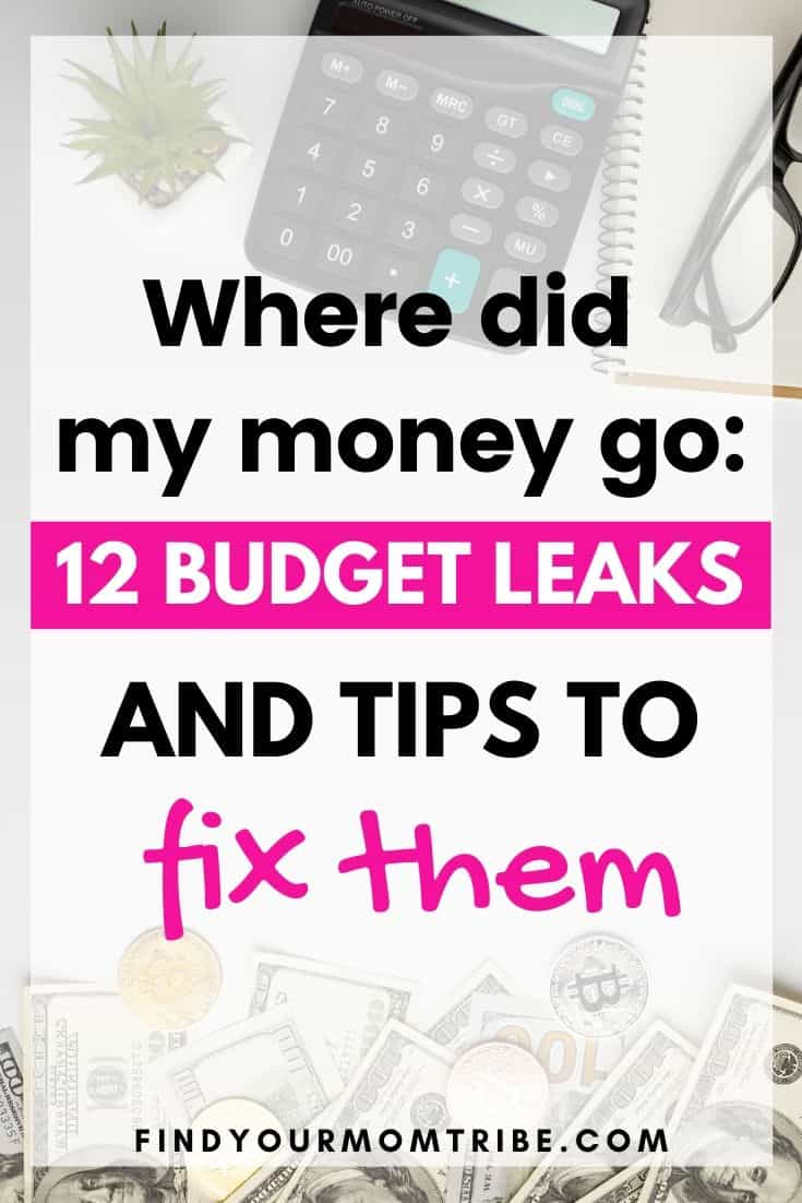 Where Did My Money Go: 12 Budget Leaks and Tips to Fix Them