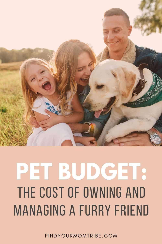 Pinterest Pet Budget