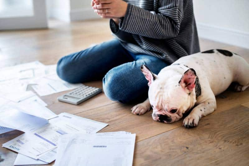 Woman managing the expenses