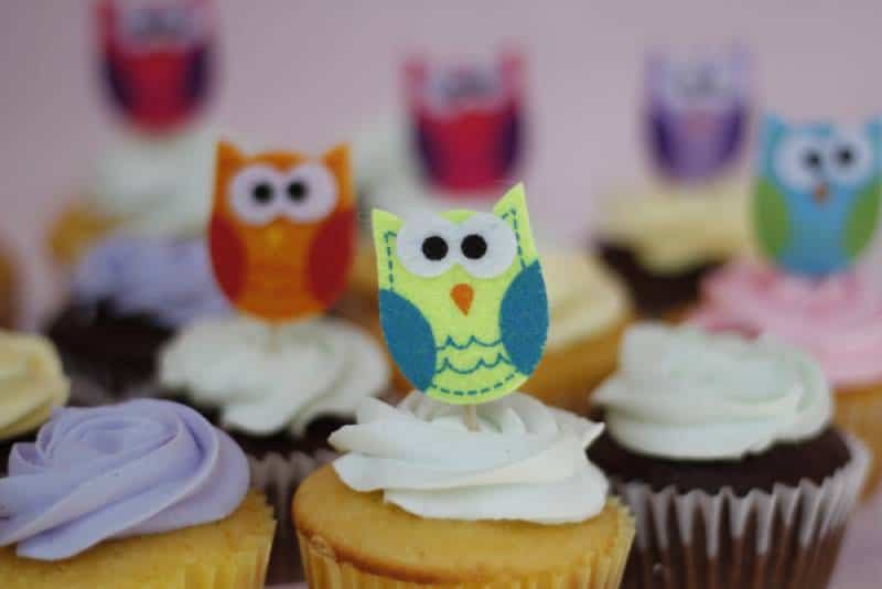 Cute DYI Owl cupcakes for baby shower