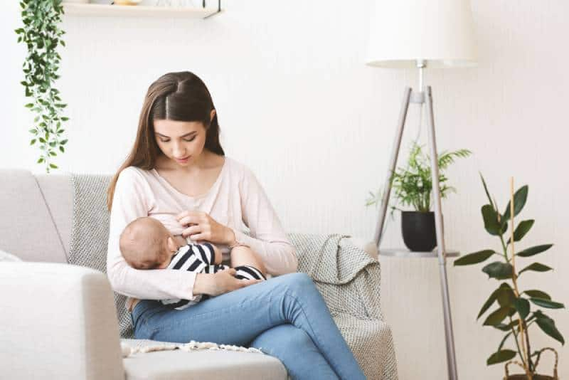 Young mother breastfeeding her newborn baby on sofa