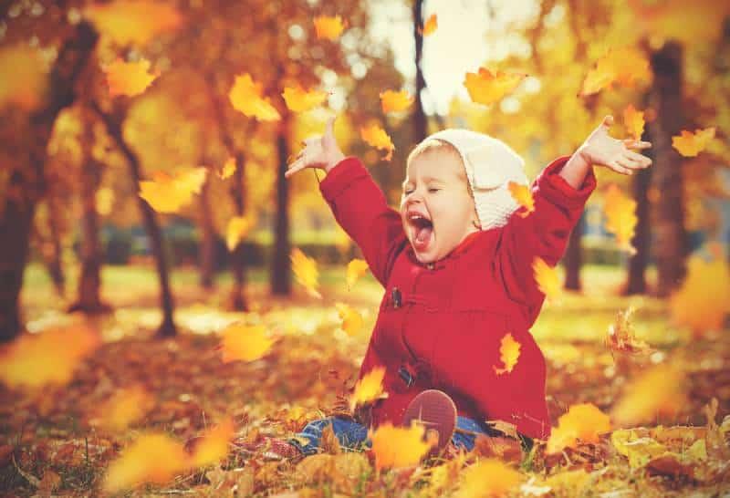 happy little child in autumn