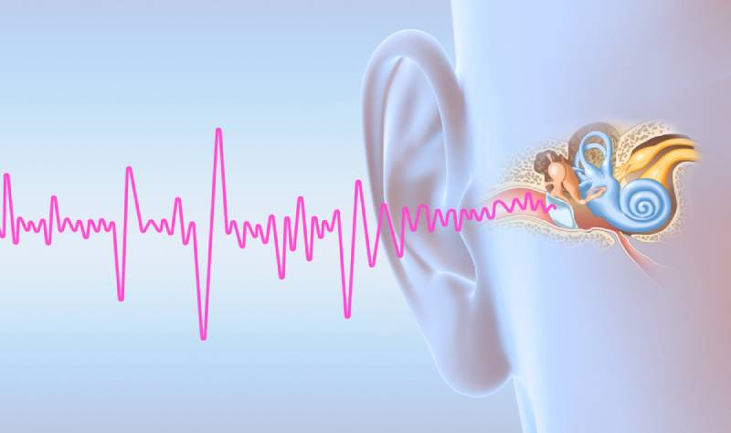 Tinnitus and human ear with middle ear, otitis, auditory canal, tympanic membrane, auditory canal and cochlea nerve