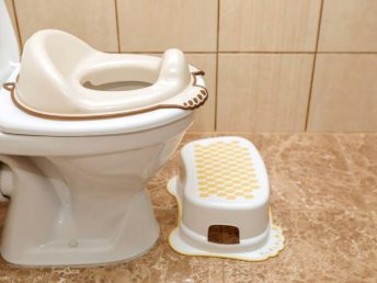 potty training toilet seat on an adult toilet seat in a bathroom