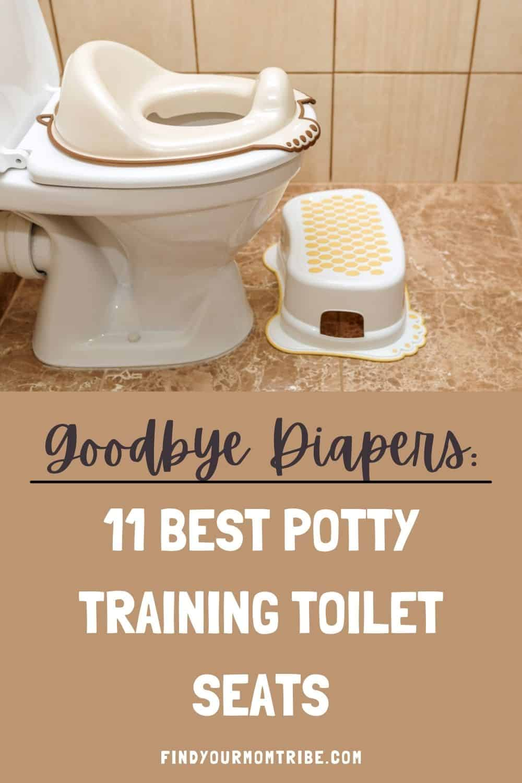 Pinterest potty training toilet seat