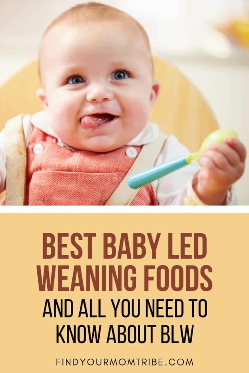 Best Baby Led Weaning Foods And All You Need To Know About BLW