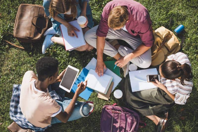 overhead view of young students studying together while sitting on grass
