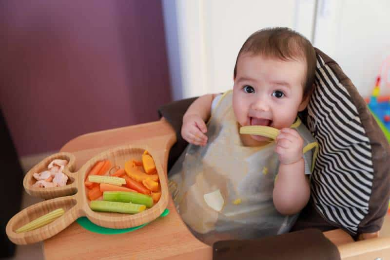 Cute boy self feeding with finger food dishes of mix vegetables corn,carrot,cucumber, pumpkin and fish