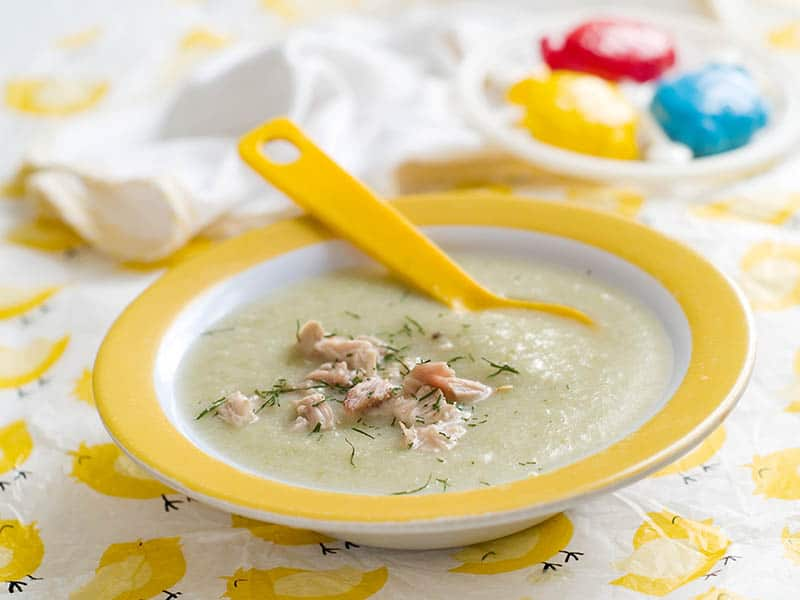 Easy homemade baby food recipes with meat