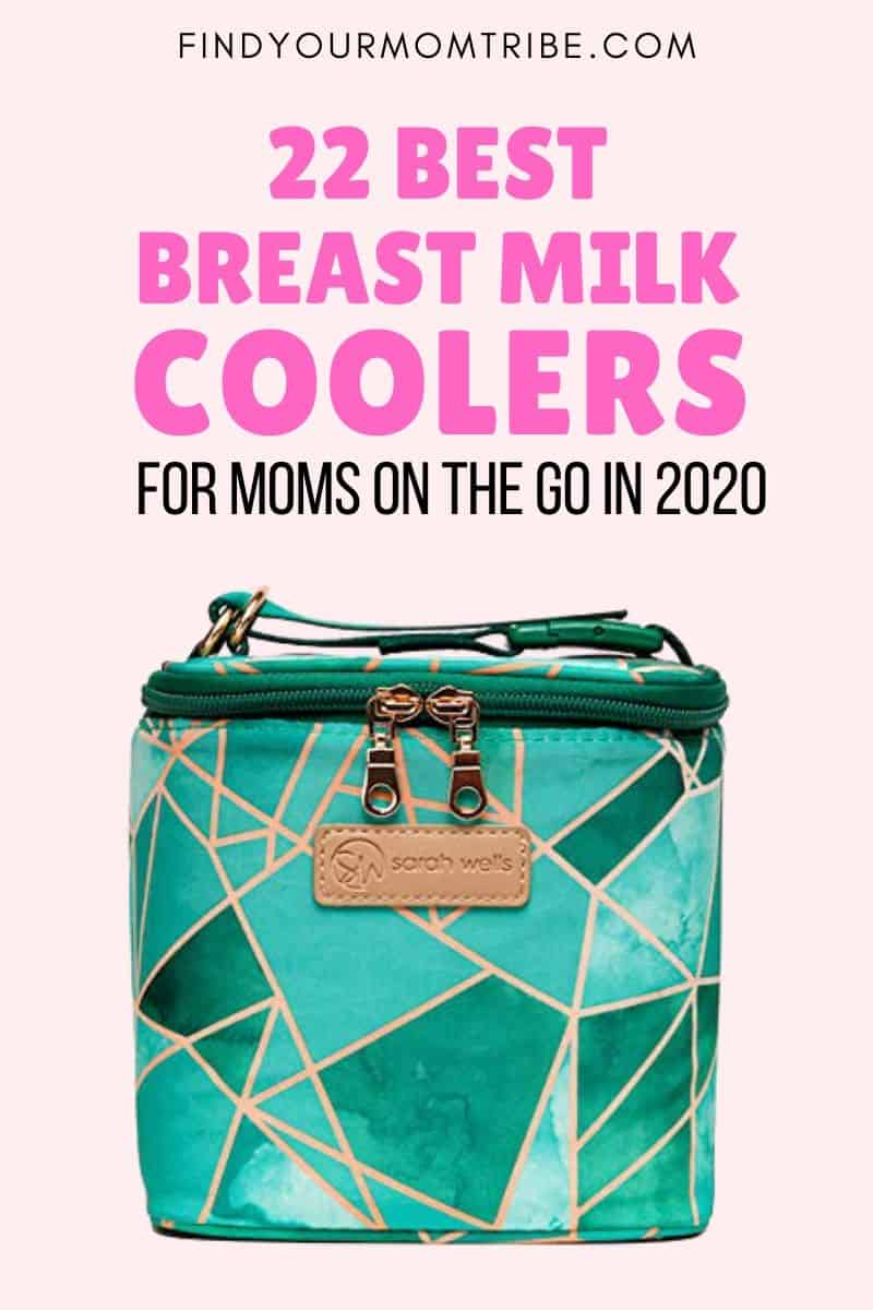 22 Best Breast Milk Coolers For Moms On The Go In 2020