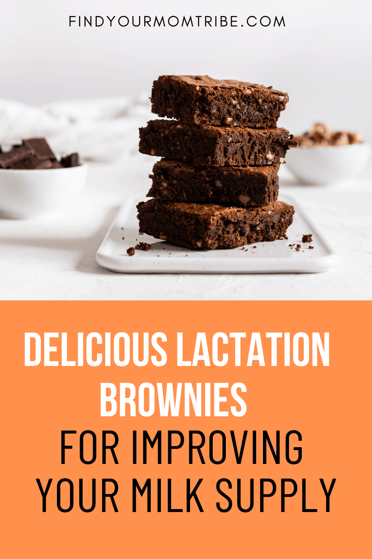 Pinterest Lactation Brownies