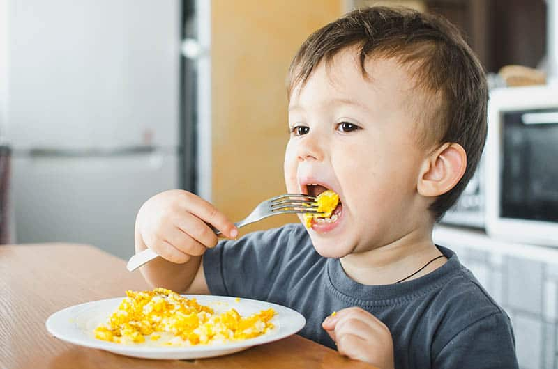 Baby boy toddler eating eggs