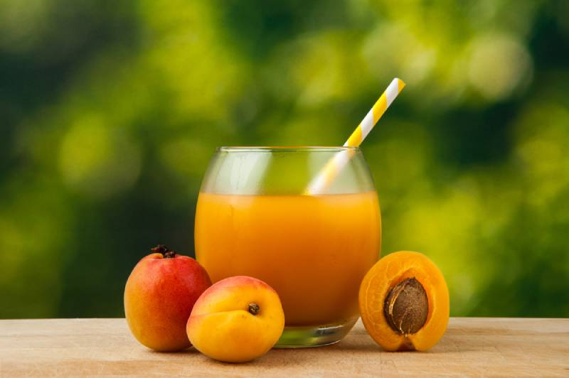 Fresh Apricot Juice in a glass and Apricots on wooden table outdoors