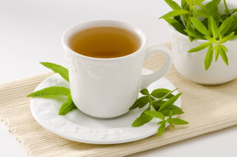 Lemon verbena Herbal Tea in a white cup on a table