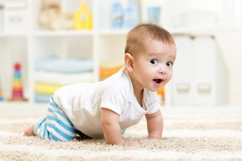 beautiful baby boy crawling