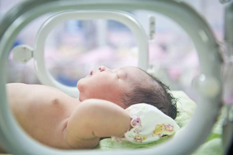 little baby lying in incubator