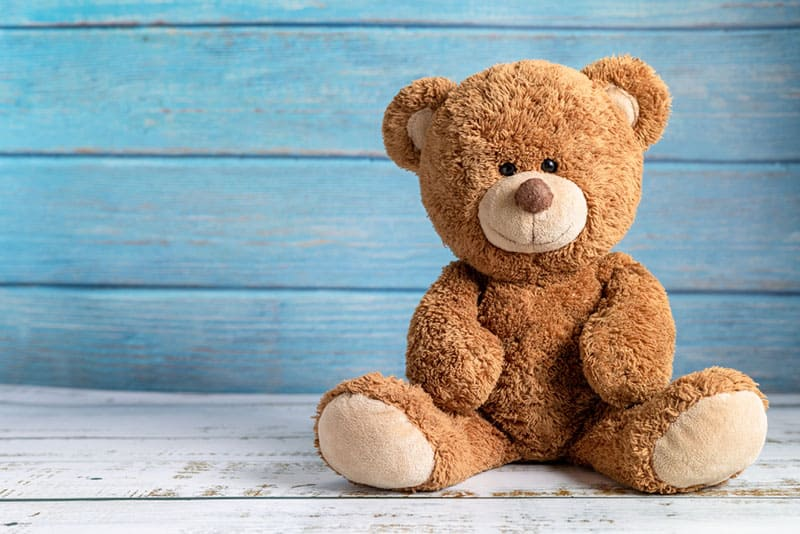 teddy bear in n front of blue background