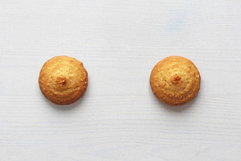 Cookies on a white background, similar to female nipples.