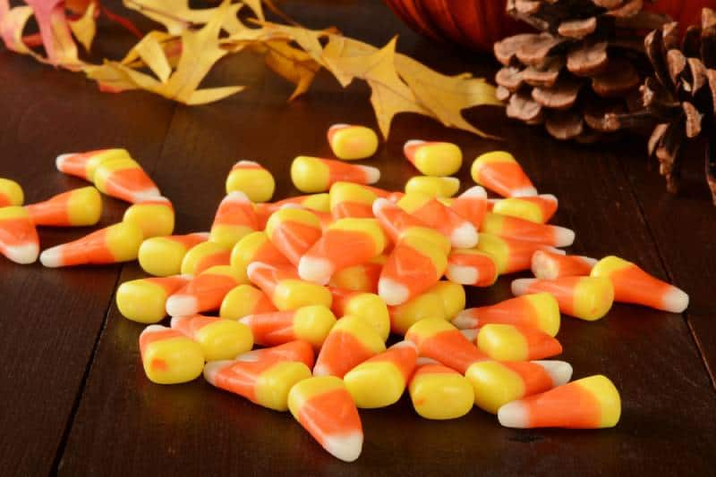 Candy corn on a rustic wooden table with holiday decorations