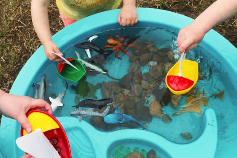 Children Playing with Boats and Sea Creature/Ocean Life Toys in a Water Table
