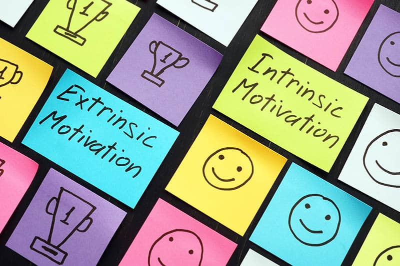 Extrinsic and intrinsic motivation signs and small memo sticks.