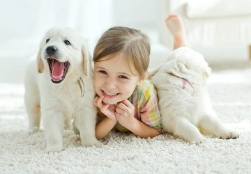 8 Good Pets For Kids And 10 Things To Consider Before Buying One
