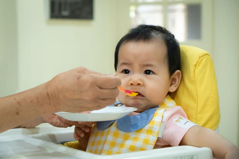 cute little child refusing to eat