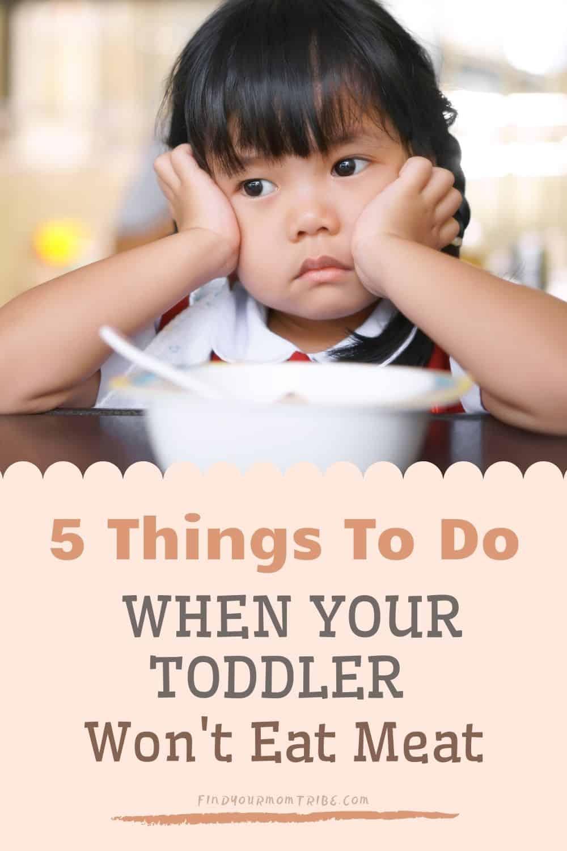pinterest toddler wont eat meat