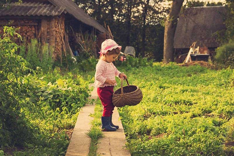 cute little girl holding a basket in the garden
