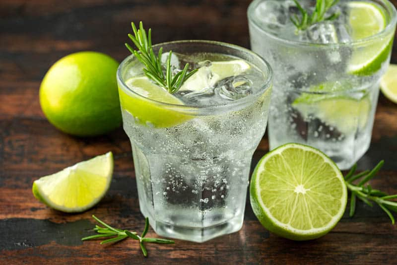 two glass of tonic water with rosemary and ice