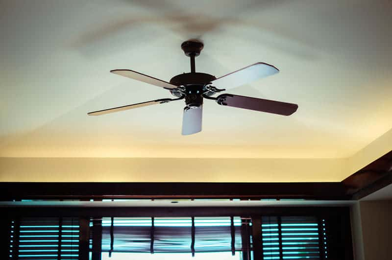 ceiling fan in the room for an air circulation