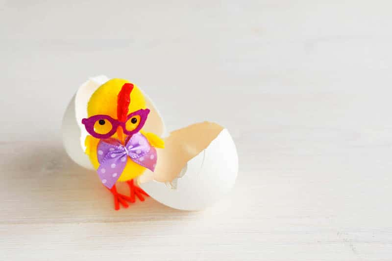 cute chicken baby toy in egg shell