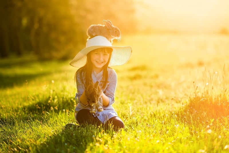 little girl sitting in the sun with two rabbits