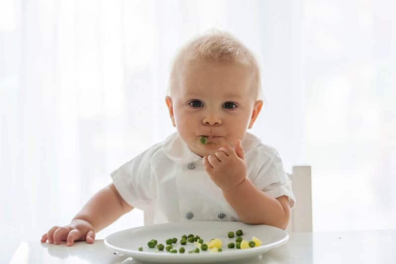 baby boy wearing white shirt eating pea from plate at home