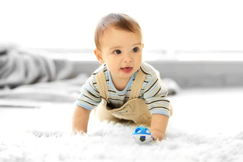 baby boy crawling on the floor while holding a toy