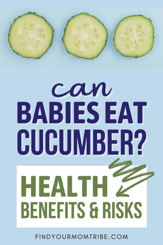 Can Babies Eat Cucumber Pinterest