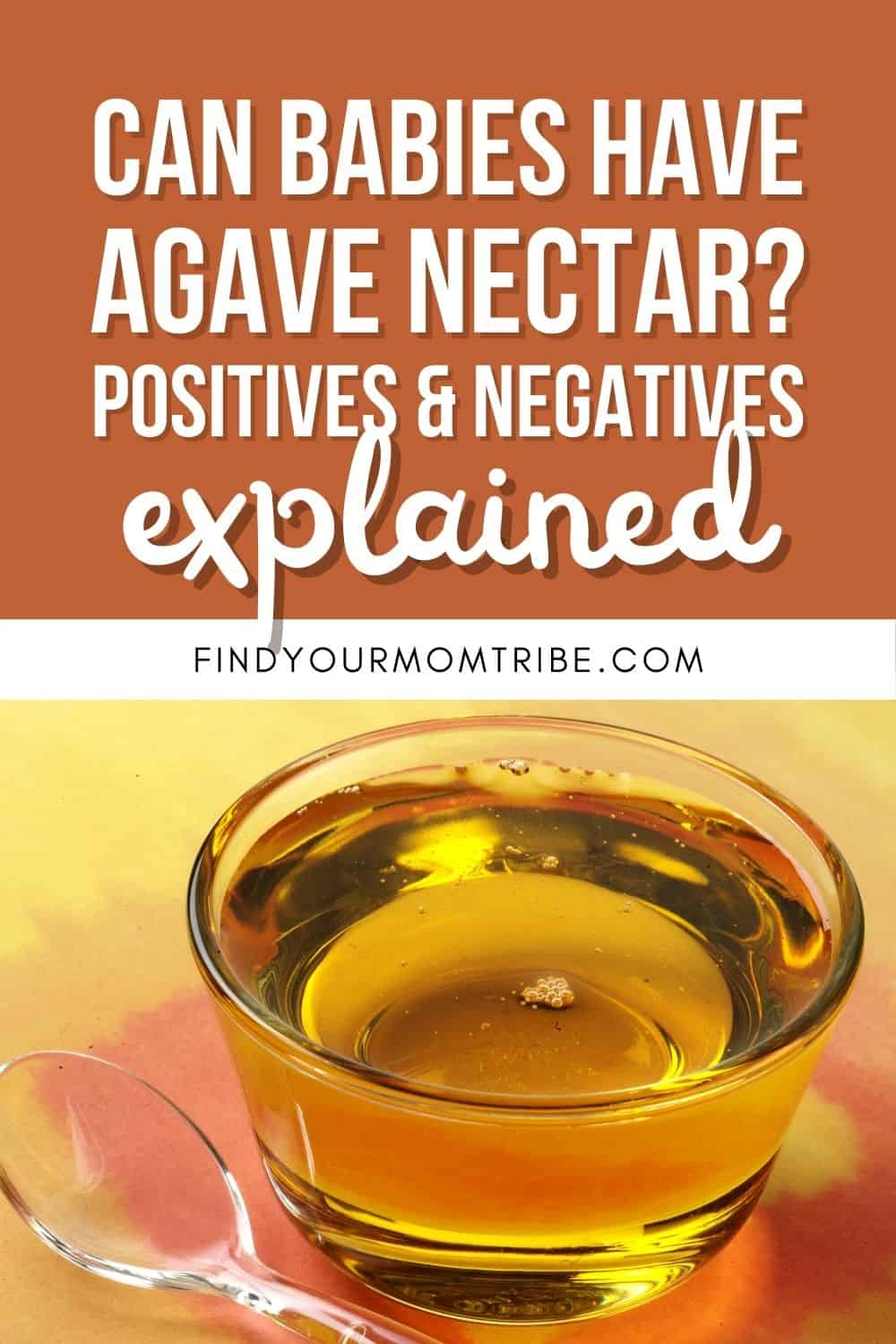 Can Babies Have Agave Nectar Pinterest