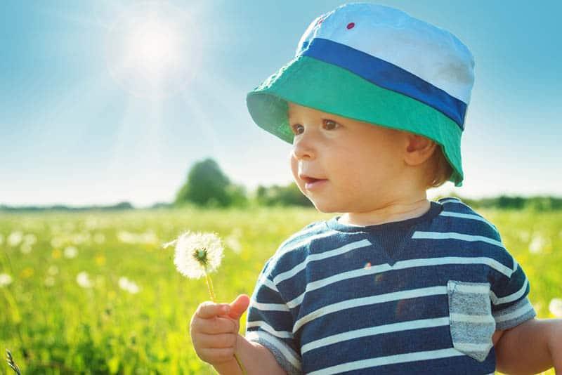 baby boy wearing hat holding dandelion in meadow