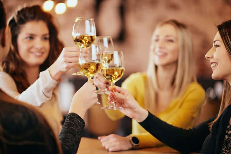 group of friends making a toast with glasses of wine