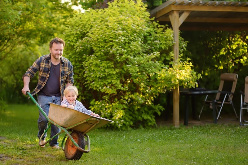 little boy laughs while his dad drives him around in a wheelbarrow
