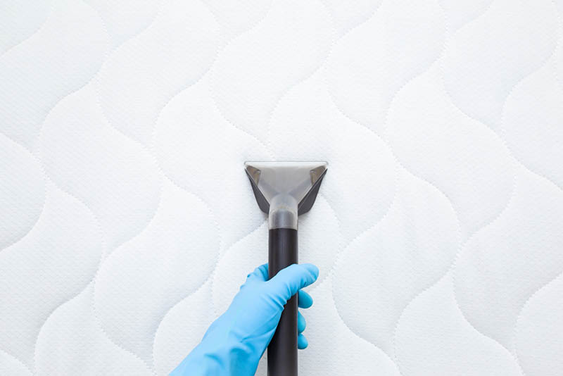woman with blue glove on hand cleaning the white mattress