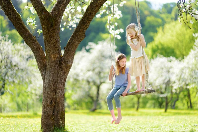 smiling sisters having fun on the swingset in nature