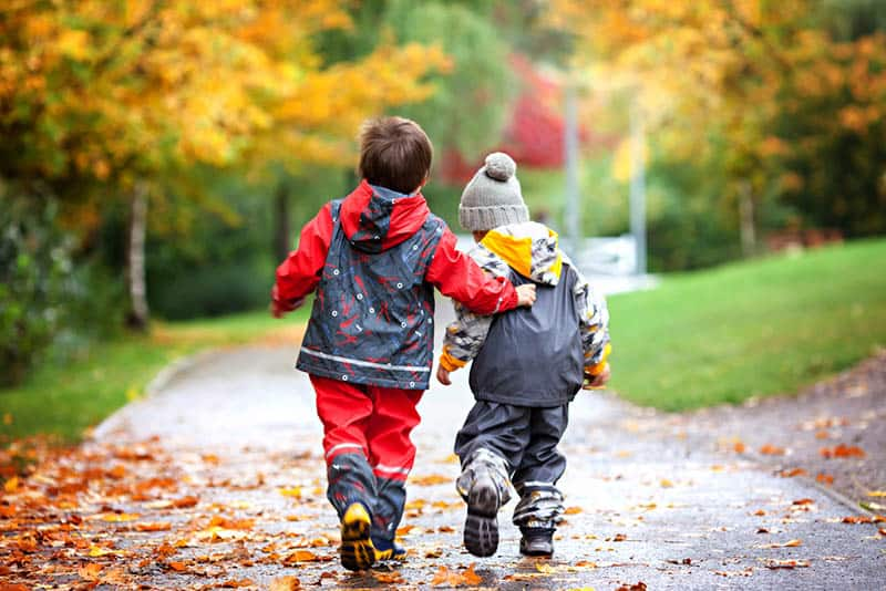 sweet brother and sister walking in the park on the autumn day
