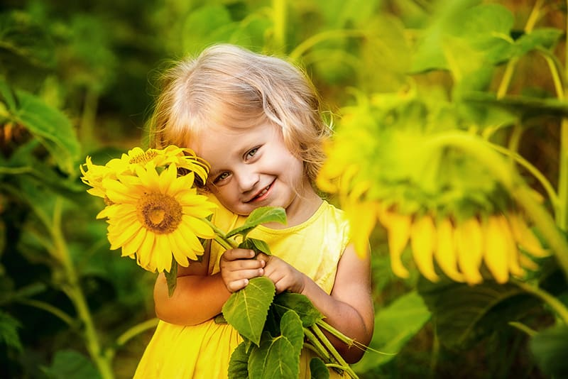 adorable smiling little girl standing in the sunflower field and posing