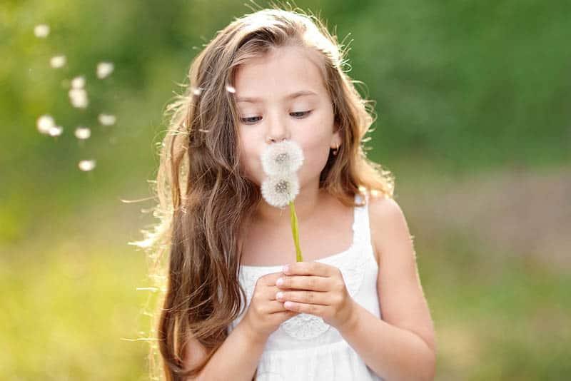 beautiful little girl blowing dandelion flower