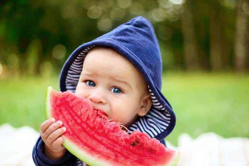 cute little boy eating a watermelon